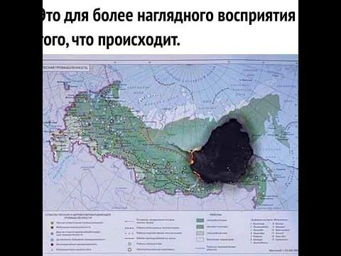 Вот от чего горят леса в Сибири.