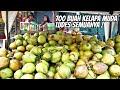Download lagu BUSET, 700 BUAH KELAPA MUDA LUDES ! 1 GLS 5 RIBU  - KULINER JAMBI - HARGA KERE RASA OKE