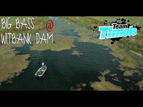 Bass Fishing Witbank Dam For Giants