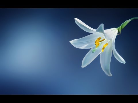 A Chant for INNER HAPPINESS   Anand Bhayaa Meri Maye   Mantra Meditation Music