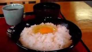 T.K.Gたまごかけごはんの美味しい食べ方~但熊(たんくま)~ thumbnail