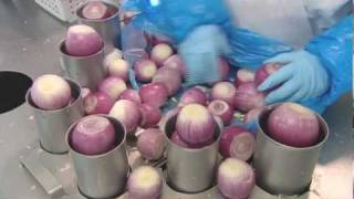 Onions How It's Made - Onions (Gills' Onions)