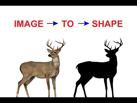 Illustration Tutorial | How to Convert Image to Shape In Illustrator