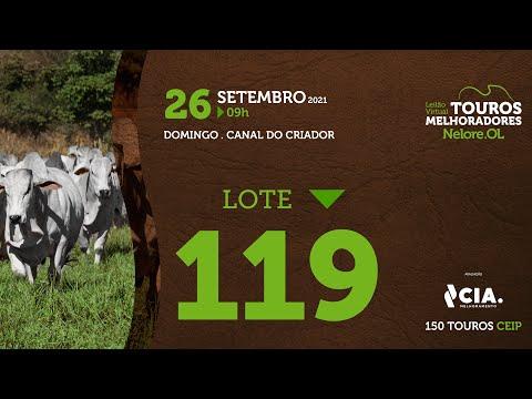 LOTE 119 - LEILÃO VIRTUAL DE TOUROS 2021 NELORE OL - CEIP