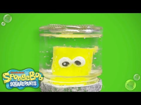 DIY Holiday Gift Guide: SpongeBob SquarePants Snowglobe | Nick