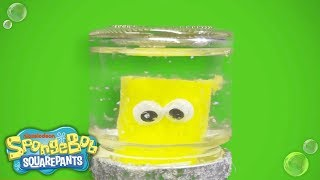 SpongeBob SquarePants | Holiday Snowglobe DIY | Nick