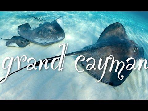 CAYMAN ISLANDS VACATION!