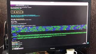 Hive 2.0 Запуск фермы по Rig_id на Nanopool. GTX 1070