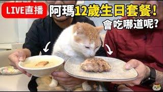 黃阿瑪的直播-阿瑪12歲生日套餐-會吃哪道呢