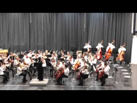 Beaver Lake middle school orchestra (2)