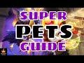 Super Pets Guide: Castle Clash Super Pets Mutant Pets
