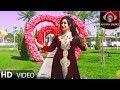 Dil Anghez دل انگیز - Dilbare Jani دلبر جانی OFFICIAL VIDEO