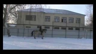 Произвольная.Ламбада и Плакса.Верховая езда.зима2012