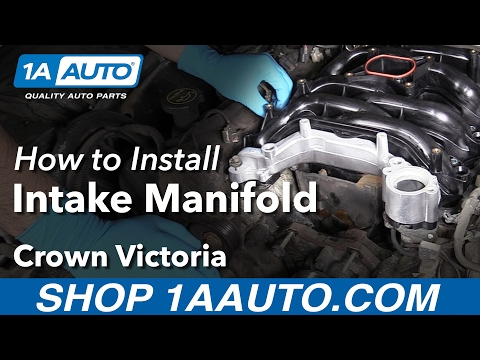 How to Install Replace Intake Manifold 2004 V8 4.6L Ford Cro