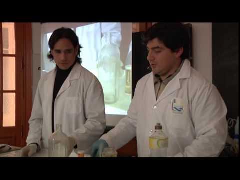 experimentos bioquimica para internet