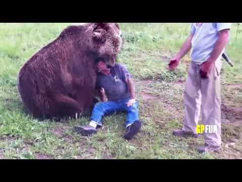 Just another day in Russia (with bears everywhere)