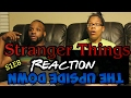 Stranger Things S1E8 FINALE The Upside Down Reaction mp3