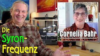 Die Syron Frequenz   Cornelia Bahr