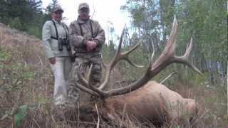 Muzzleloader Bull Elk : White Peaks HD