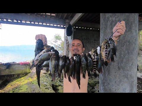 SE02EP15 P2 - DIGMAAN NA! AMBUSH HUNTING - PADAMIHAN NG HULI   Talisay Batangas