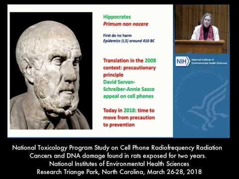 Dr. Annie Sasco: National Toxicology Program Study on Cell Phone Radiation