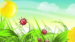 Божья коровка  Мульт песенка  Ladybird  Kid's song  Наше всё!