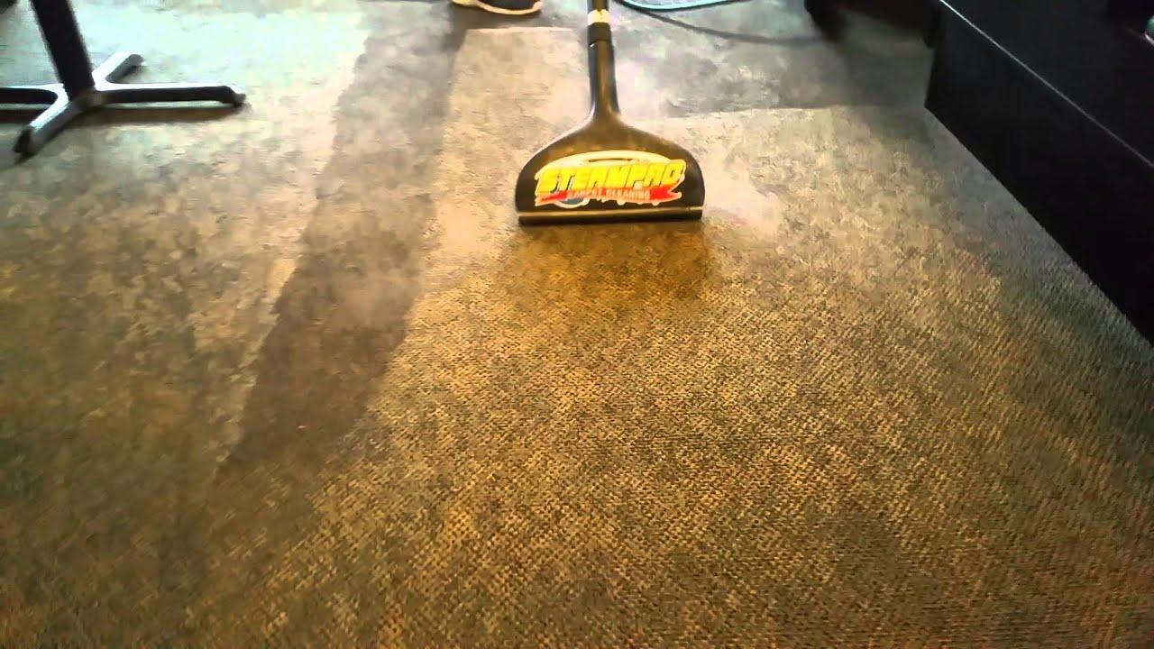 steampro carpet cleaning mesa az