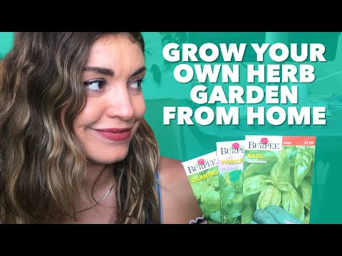 How We Deal at Home: Grow Your Own Herb Garden