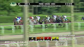 Vidéo de la course PMU PREMIO CURSORA 2005