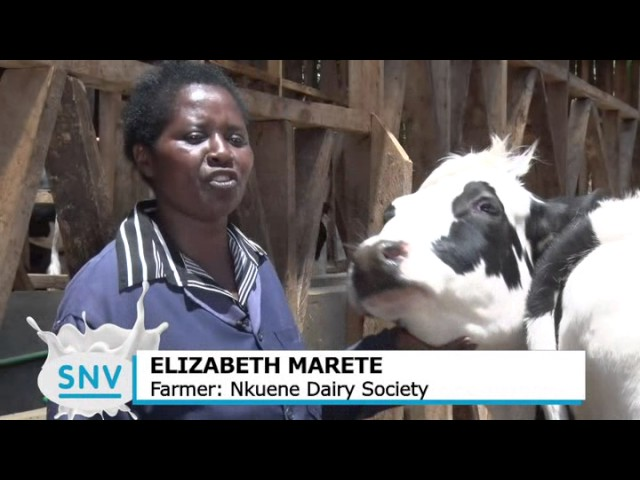 KMDP activities with farmers in the Kenyan  Dairy Value Chain (long Version)