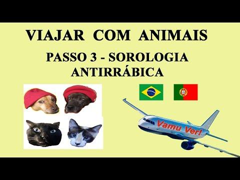 TERCEIRO PASSO - Sorologia Antirrábica Cães e Gatos Portugal PARTE I/ Vamu Ver!