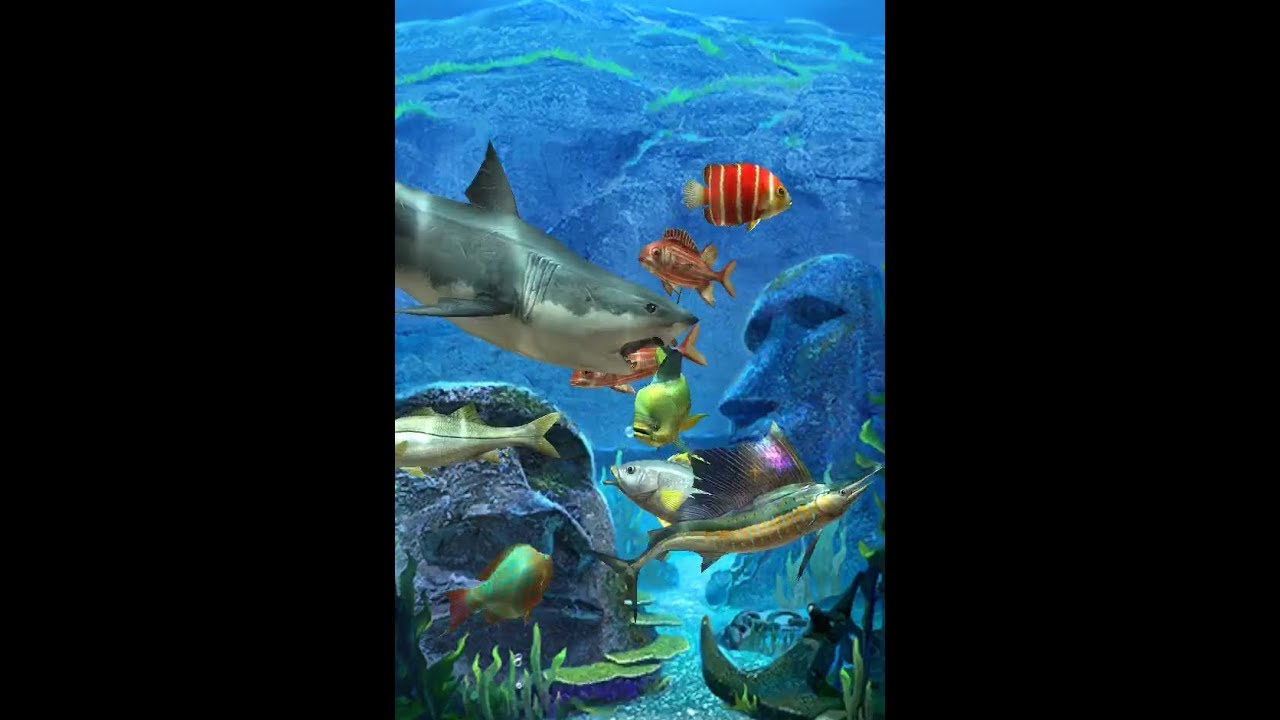 ตู้เลี้ยงปลาในเกมส์ ACE FISHING