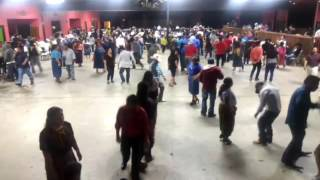 FLOR DEL PARAISO EN DALTON GA. VIDEO 01