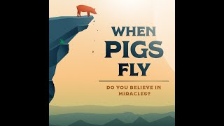 """When Pigs Fly (Part 3) - """"Miracles Of Provision"""""""