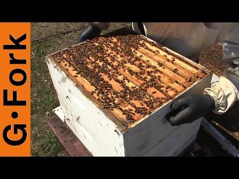 Reverse Supers In Spring – Beekeeping 101 – GardenFork