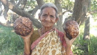 How to Cook Elephant Foot Curry By My Grandma || Myna Street Food || Food Info