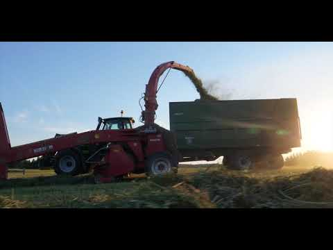 Silage in norway I New version 2018