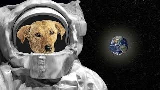 Вот Кто Самом Деле Первым Побывал в Космосе