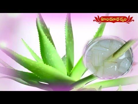 Health Benefits of Aloe Vera | Veda Vaidhyam | Hindu Dharmam