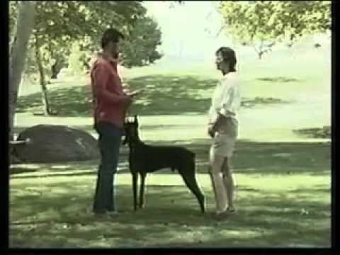 YouTube - Gestione del cane al guinzaglio.flv