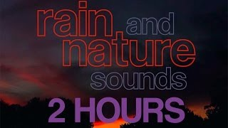 2 Hours of Rain, Stream, Crickets, Frogs and Nature Sounds 1080p [HD]