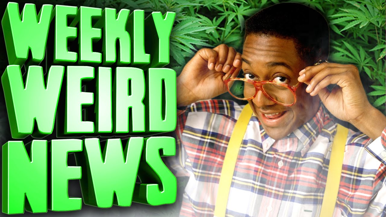 Steve Urkel is Back, and He's Selling Weed Now - Weekly Weird News