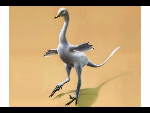 New Dinosaur Looks Like Odd Mix Of Duck, Croc, Ostrich, Swan