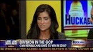 Division in the GOP - Republicans vs. Tea Party w/ Dana Loesch - Huckabee Show - 8/10/13