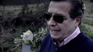 Doku 2019 neu   Mafiöse Familienstruktur   Gesellschaft, Mafia, Kriminalität
