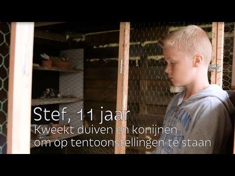 Stef | Klantenverhalen AVEVE