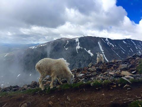 Quandry Peak  - Colorado 14er Dayhike