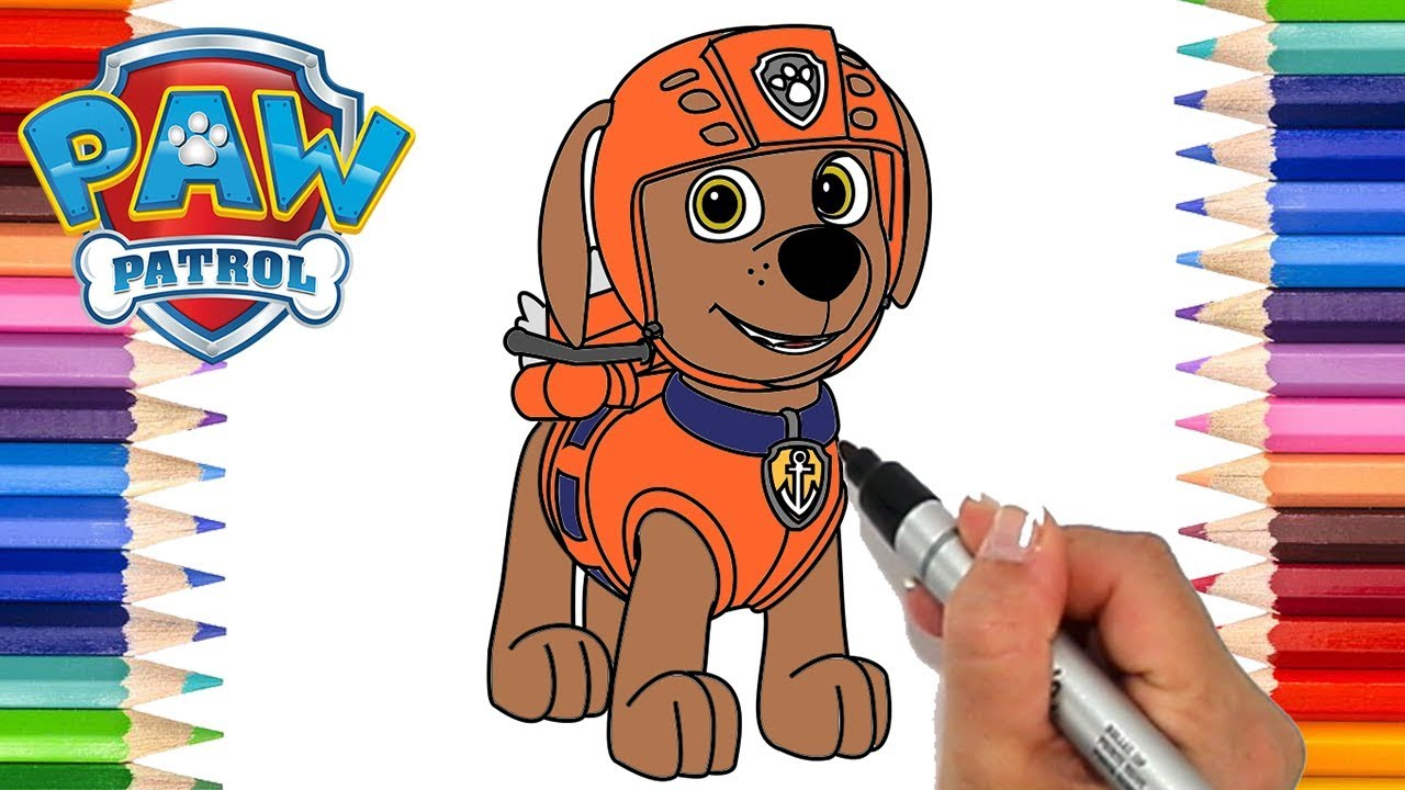 How To Draw Paw Patrol Zuma Coloring Pages For Kids