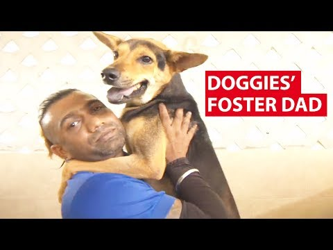 Doggies' Foster Dad: Working at SPCA | On The Red Dot | CNA Insider