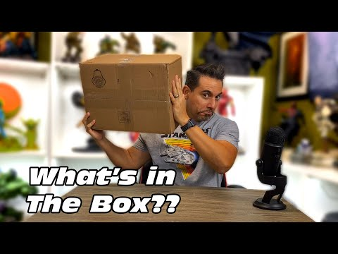 What's in the Box?? Mystery Box Birthday Gift!